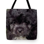 Sissy Tote Bag