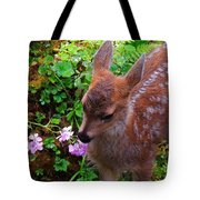 Sitka Black-tailed Fawn Tote Bag