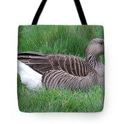 Sitting Goose Tote Bag