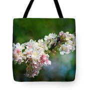 Sitting Guard In The Cherry Blossoms Tote Bag