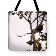 Sitting High Up Tote Bag