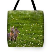 Sitting In Clover Tote Bag