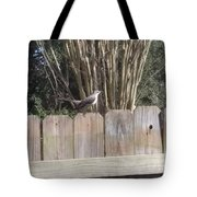 Sitting On A Fence  Tote Bag