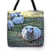 Sitting There Tote Bag