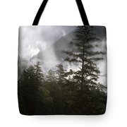 Siuslaw National Forest Tote Bag