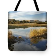 Siwa Oasis Tote Bag