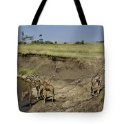 Six Is A Crowd Tote Bag