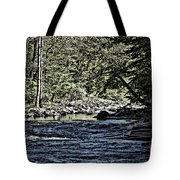 Six Mile Creek Ithaca Ny Tote Bag