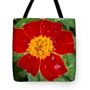 Sixlets Light Maroon Flower Tote Bag
