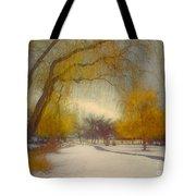 Skaha Path In Winter Tote Bag