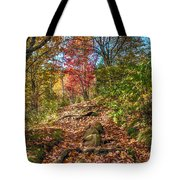 Skeleton Of Graveyard Fields Tote Bag