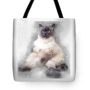 Sketch Of Regal Himalayan Cat - Not Tote Bag