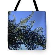 Skies Grass  Tote Bag