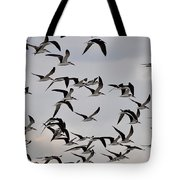 Skimmer Sky Tote Bag