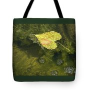 Skimming The Surface Tote Bag