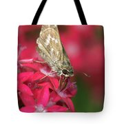 Skipper Butterfly Tote Bag