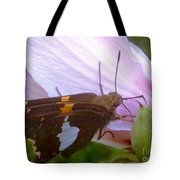 Skipper Butterfly With White And Orange Colors Tote Bag