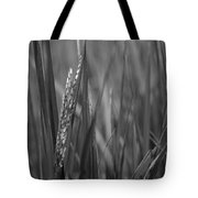 Skn 2913 Yet To Collect The Yield Color Tote Bag