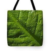Skunk Cabbage Leaf Tote Bag