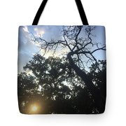 Sky And Sun Tote Bag