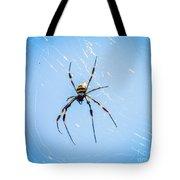 Sky Blue Web Tote Bag