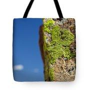 Sky Lichen Tote Bag