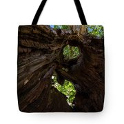 Sky View Through A Hollow Tree Trunk Tote Bag