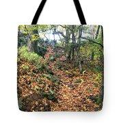 Skylands Path P Tote Bag