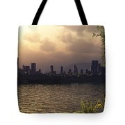 Skyline Lake Tote Bag