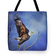 Skyward - Bald Eagle Tote Bag