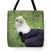 Skyward Eagle Tote Bag