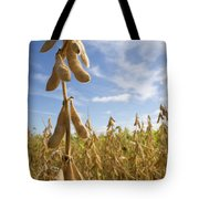 Skyward Soy Tote Bag