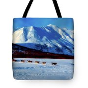 Sledding In Russia Tote Bag