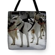 Sledge Dogs H A Tote Bag