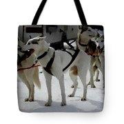 Sledge Dogs H B Tote Bag