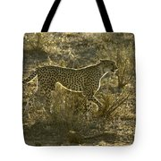 Sleek And Spotted Tote Bag