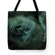 Sleep Tight Tote Bag