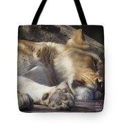 Sleeping Beauty,  Houston Zoo Tote Bag