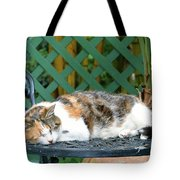 Sleeping Cutie Tote Bag