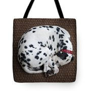 Sleeping Dalmatian II Tote Bag