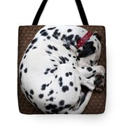 Sleeping Dalmatian Tote Bag