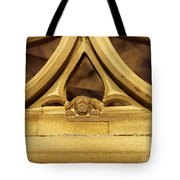 Sleeping Dog In Strasbourg Cathedral Tote Bag
