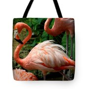 Sleeping Flamingo Tote Bag