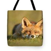 Sleeping Fox Kit Tote Bag