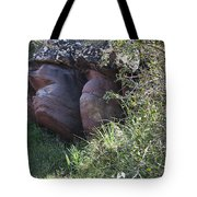 Sleeping In The Jungle - Stone Face In Forest Tote Bag
