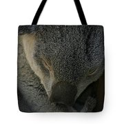 Sleeping Koala Bear Tote Bag