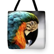 Sleeping Macaw Tote Bag