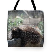 Sleeping Porcupine With Lots Of Quills Tote Bag