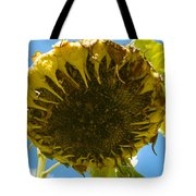 Sleeping Sunflower Tote Bag