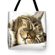 Sleeping Tabby Cat  Tote Bag